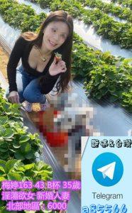 台北熟女系列 梅婷163 43 B杯35歲 淫蕩欲女 缺很大